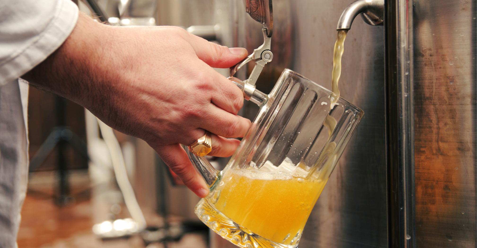 Как сварить лагерное пиво в домашних условиях