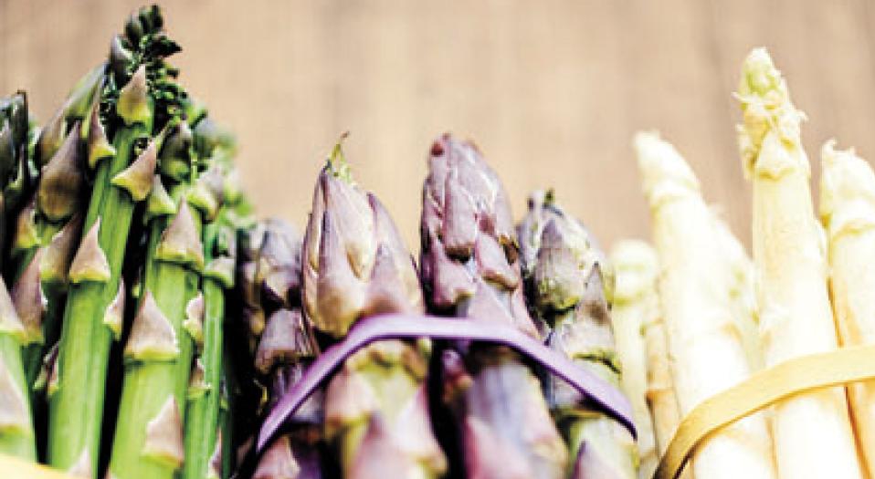Tricolored Asparagus