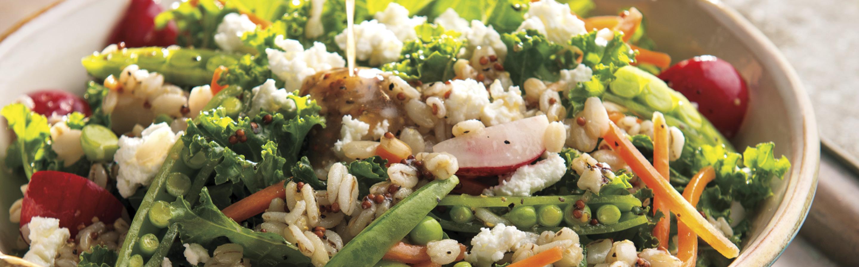 rainbow barley salad