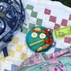 outdoor picnic with caterpillar celery