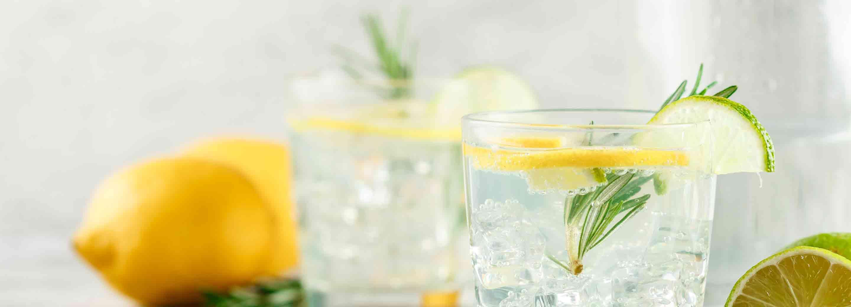 Schnucks Gin & Tonic