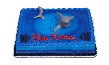 Kids Shark Cake